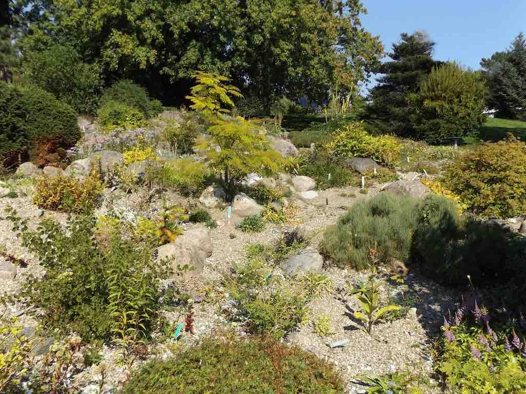 Botanical Gardens, Aarhus - by Doug Kerr - Dougtone:Flickr