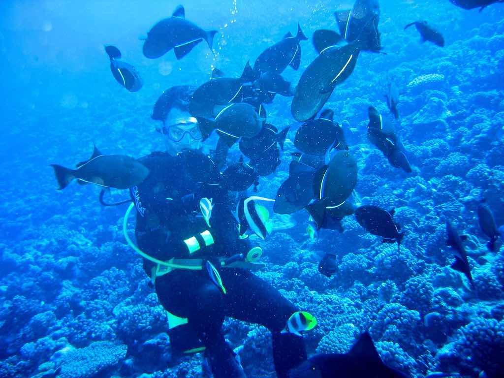 Scuba Diving Tahiti - by Manoel Lemos - manoellemos:Flickr