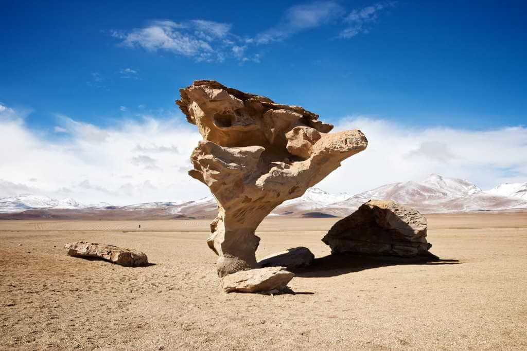 Arbol de Piedra -by Nico Kaiser/Flickr.com