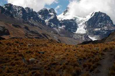 Cordillera Real -by Mark Rowland/Flickr.com