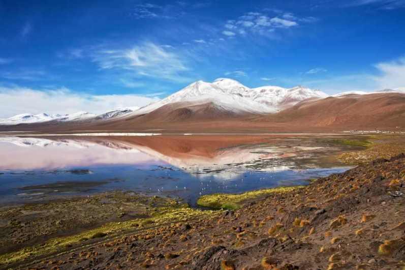 Laguna Colorada -by Nico Kaiser/Flickr.com