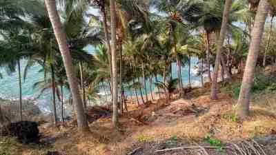South Goa -by Rahulpaul93/Wikimedia.org