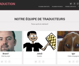 WP Traduction, plateforme de mise à disposition de traductions en français de thèmes et d'extensions WordPress