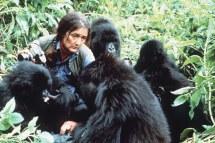 Dian Fossey Scientist Remember