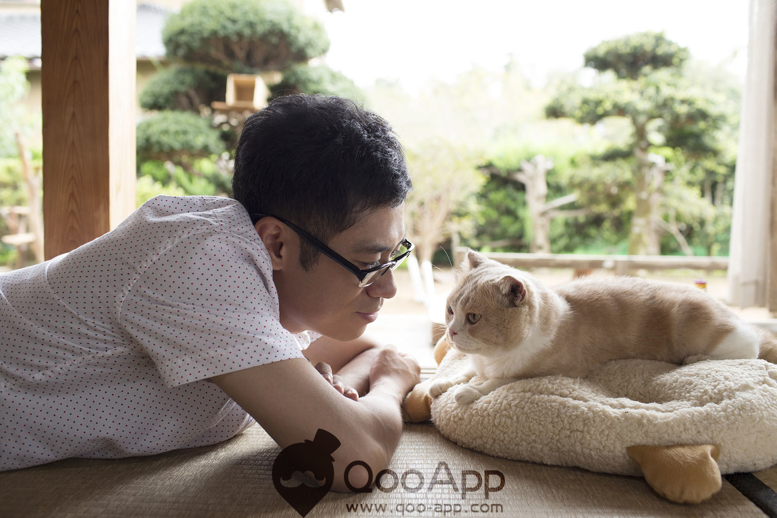 Mobile game Neko Atsume's live action movie released in 2017