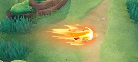 寶可夢大集結 噴火龍