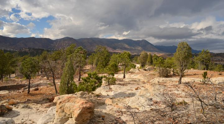 Palmer Land Trust has preserved 105,000 acres of land in Southern Colorado, including 200 acres in Colorado Springs' Ute Valley Park.
