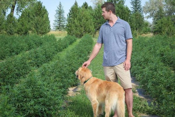Garrett Hause stands with a neighbor's dog on his hemp farm in Lafayette. It's his second year growing hemp and the first year he hopes his business will break even.