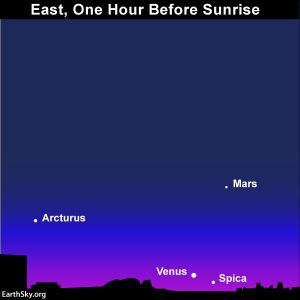 You may have seen this scene in November of 2017. Venus and Spica will again be near one another this November (2018)