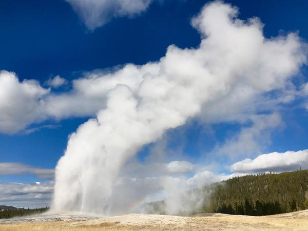The iconic Old Faithful geyser in Yellowstone National Park. The park draws more than four million visitors each year.