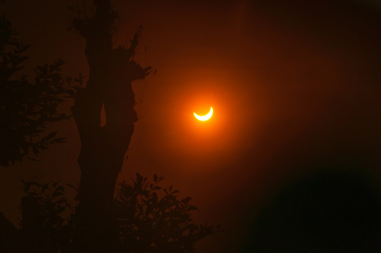 <p>A partial solar eclipse inSouth Tangerang, Indonesia in March 2016. The United States is gearing up for a total solar eclipse on August 21, 2017.</p>
