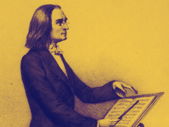 <p>Pianist and composer Franz Liszt</p>
