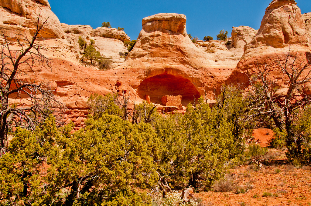 "<p class=""normal"" itemprop=""name"">The Saddle Horn Ruin is in a cliff alcove along Sand Canyon Trail in Canyons of the Ancients National Monument near Cortez, Colorado.</p>"