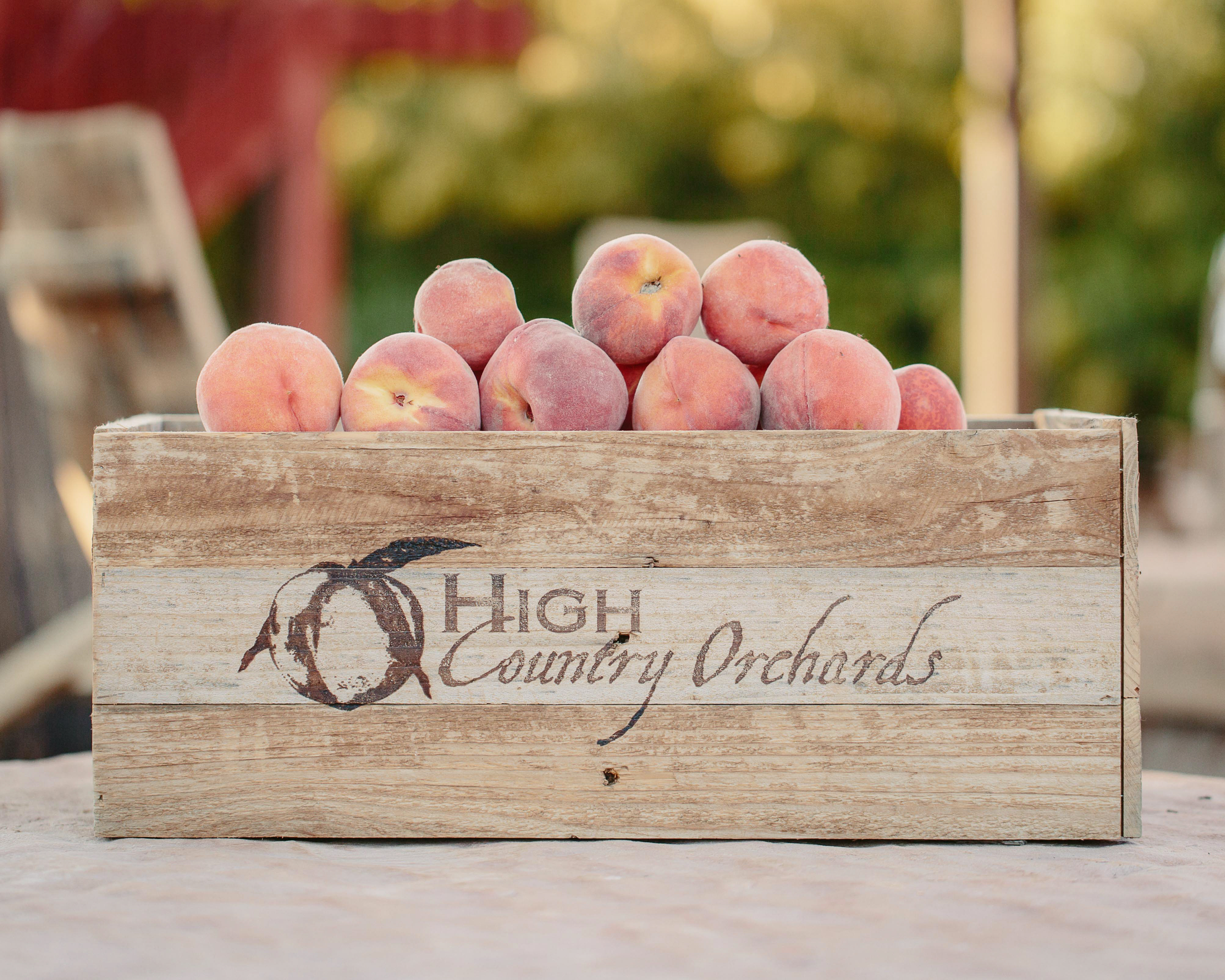<p>We're mid-way through the summer, and that meansColorado peaches will soon be coming to a store near you.</p>