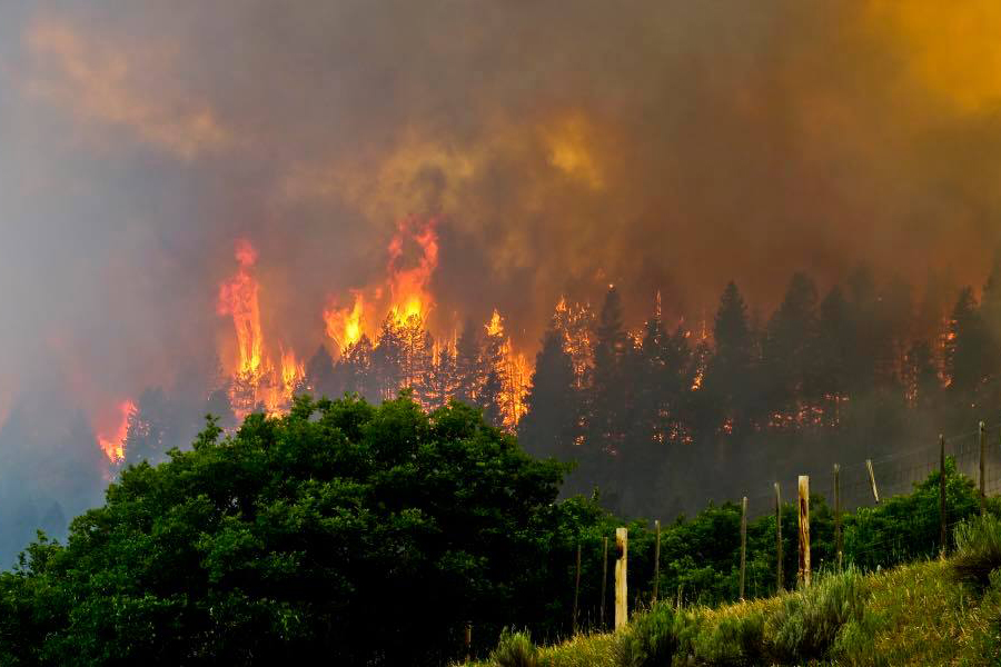 <p>A portion of the 416 Fire.</p>