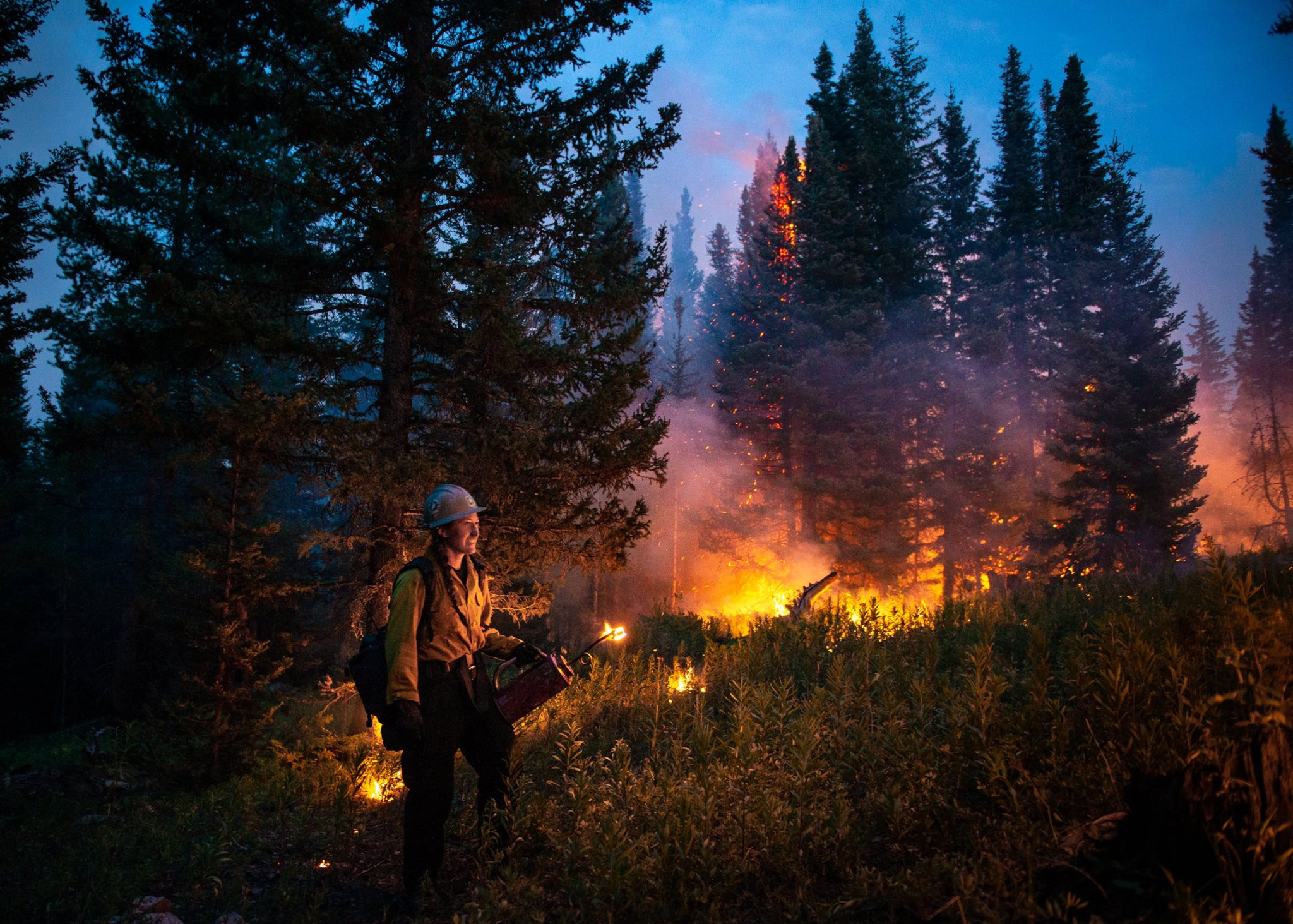 <p>Fire crews in the Silver Creek Fire from the Wyoming Interagency Hotshots work on nighttime operations on Aug. 15, 2018.</p>