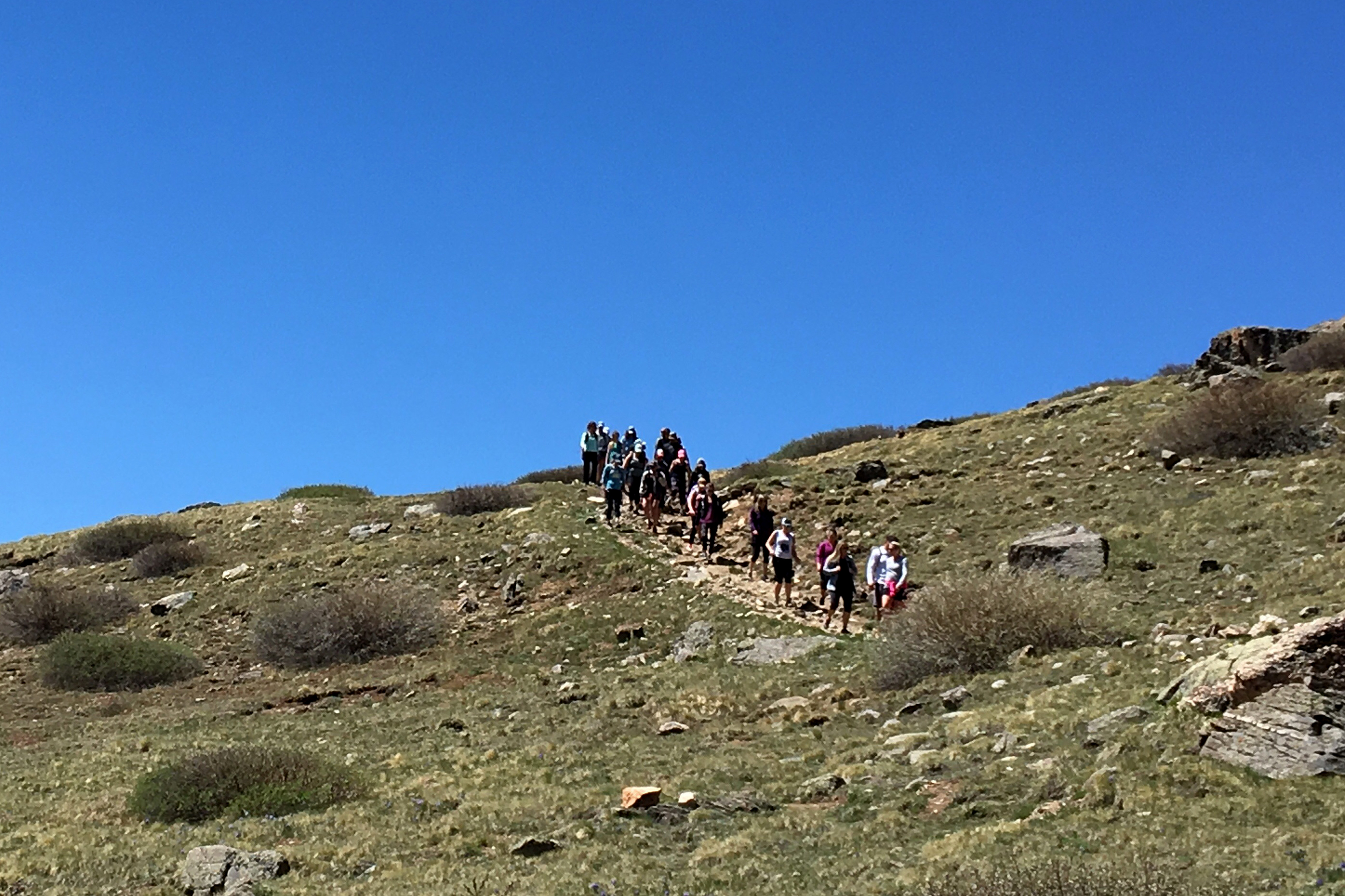 A large group of hikers on the trail from Square Top Lakes to Guanella Pass.