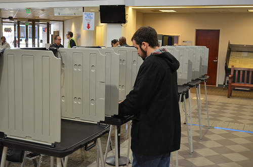 <p>A voter at the polls in November 2013.</p>