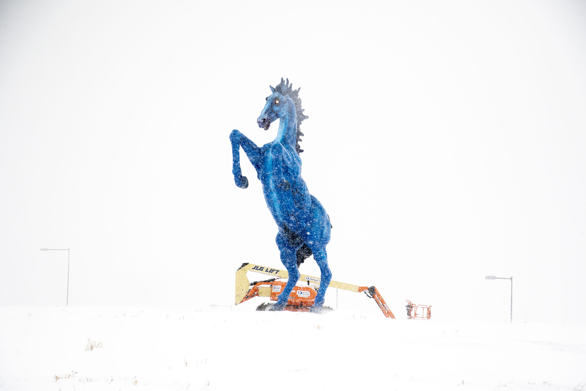 A wild blue horse ignores ths cold on a very snowy day Denver International Airport. Oct. 29, 2019. (Kevin J. Beaty/Denverite)