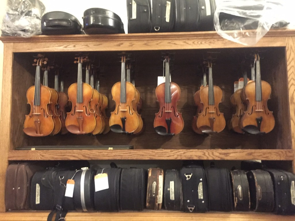 Violins hanging in the shop