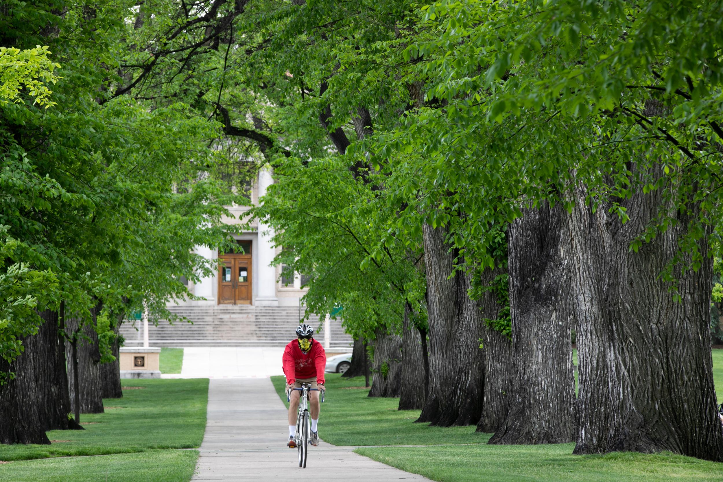 Colorado State University CSU Campus Cyclist Face Mask