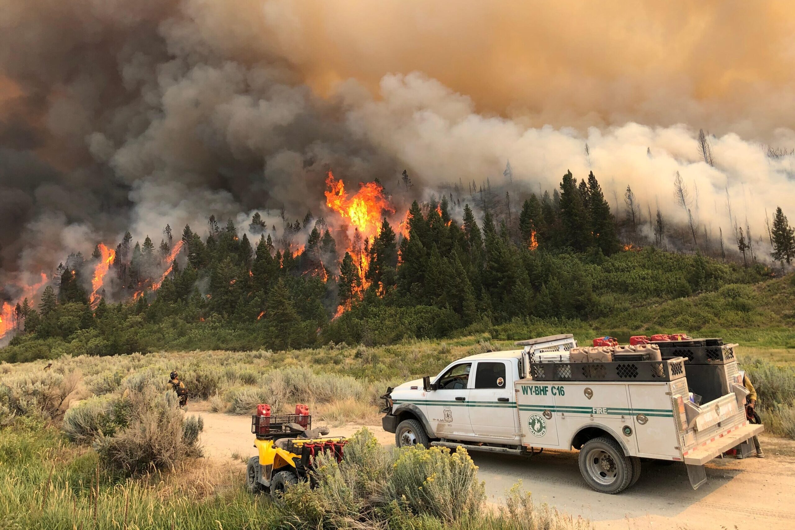 A stand of trees catches fire on Aug. 7, 2020, as part of the Pine Gulch Fire north of Grand Junction, Colo.