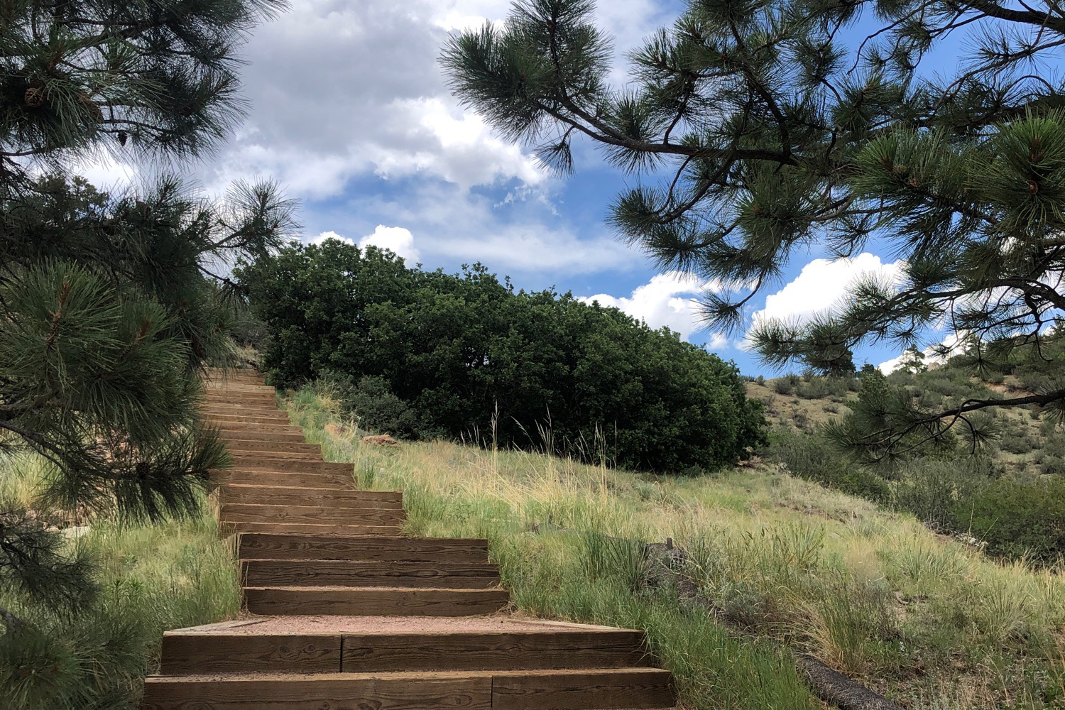 The Tava Trail starts with some steps on the west side of UCCS.