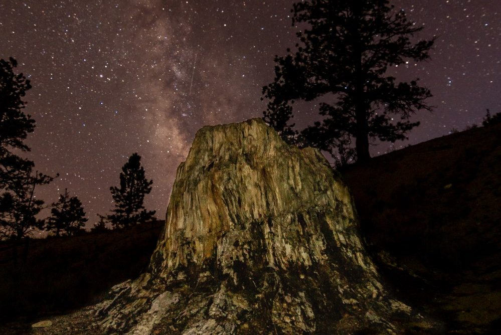 The Florissant Fossil Beds National Monument now joins Mesa Verde and the Great Sand Dunes as a certified International Dark Sky Park.