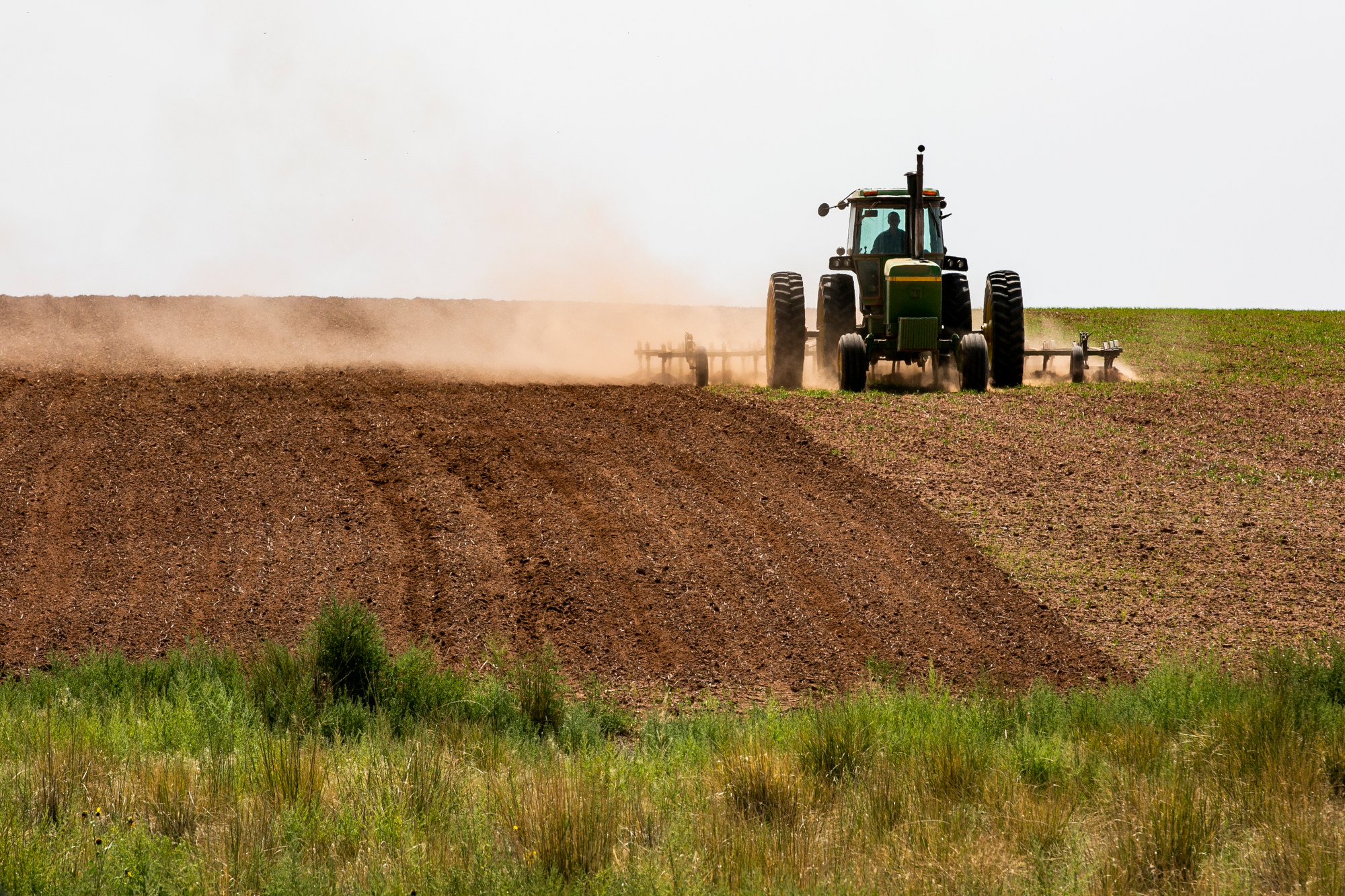 210830-DOVE-CREEK-FARMING-BEANS-AGRICULTURE