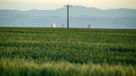 Denver seen poking above farmland northeast of the the city. (Kevin J. Beaty/Denverite)