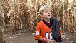 Hopelessly lost in the corn maze. (Chloe Aiello/Denverite)