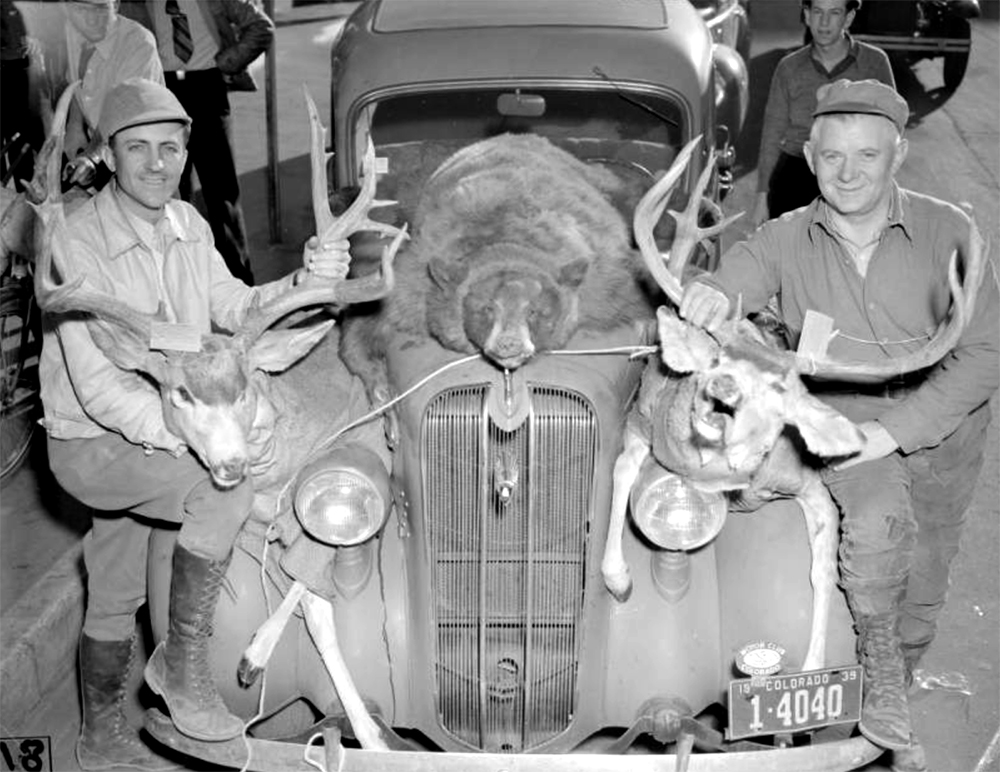 Two men pose next to their automobile with the carcasses of two bucks and a bear tied on the front of the car. Circa 1939. (Harry Mellon Rhoads/Denver Public Library/Western History Collection/Rh-1229)  historic; denver public library; dpl; archive; archival; denverite