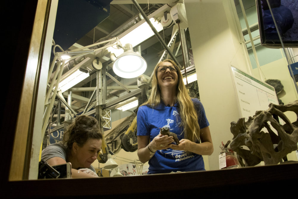 Fossil preparator Natalie Toth (right) and collections manager Kristen MacKenzie speak to media from inside the Schlessman Labratory of Earth Sciences at the Denver Museum of Nature and Science, Sept. 1, 2017. (Kevin J. Beaty/Denverite)  denver museum of nature and science; dmns; science; dinosaurs; fossils; kevinjbeaty; denverite; colorado; denver;