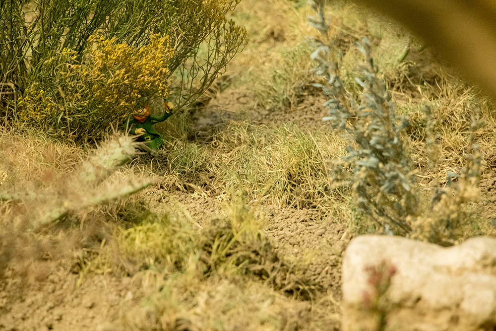 There's a little hidden leprechaun in here. Denver Museum of Nature and Science, Jan. 3, 2017. (Kevin J. Beaty/Denverite)  gnomes; dmns; denver museum of nature and science; denverite; kevinjbeaty; denver; colorado;