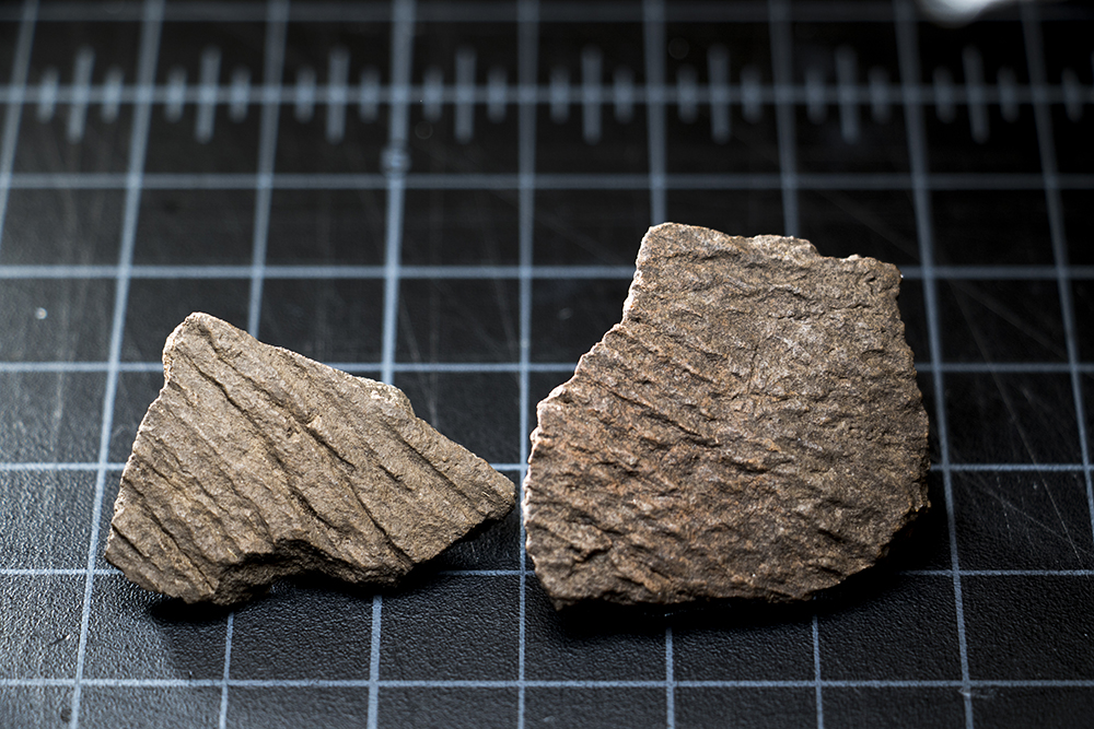 Pottery pieces discovered at Magic Mountain in Golden, Feb. 1, 2018. (Kevin J. Beaty/Denverite)  denver; colorado; denverite; kevinjbeaty; denver museum of nature and science; dmns; archaeology;
