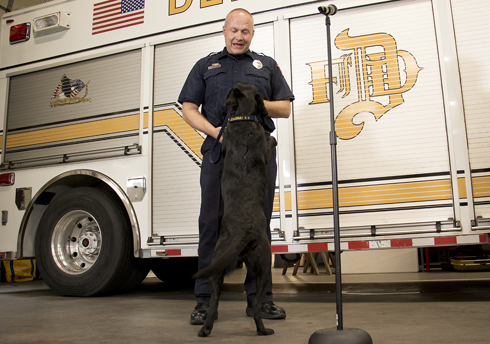 Technician Scott Renter and Cora the accelerant-sniffing dog as she's officially welcomed to her new job with the Denver Fire Department, May 3, 2018. (Kevin J. Beaty/Denverite)  pets; dogs; denver fire department; denver; colorado; denverite; kevinjbeaty;