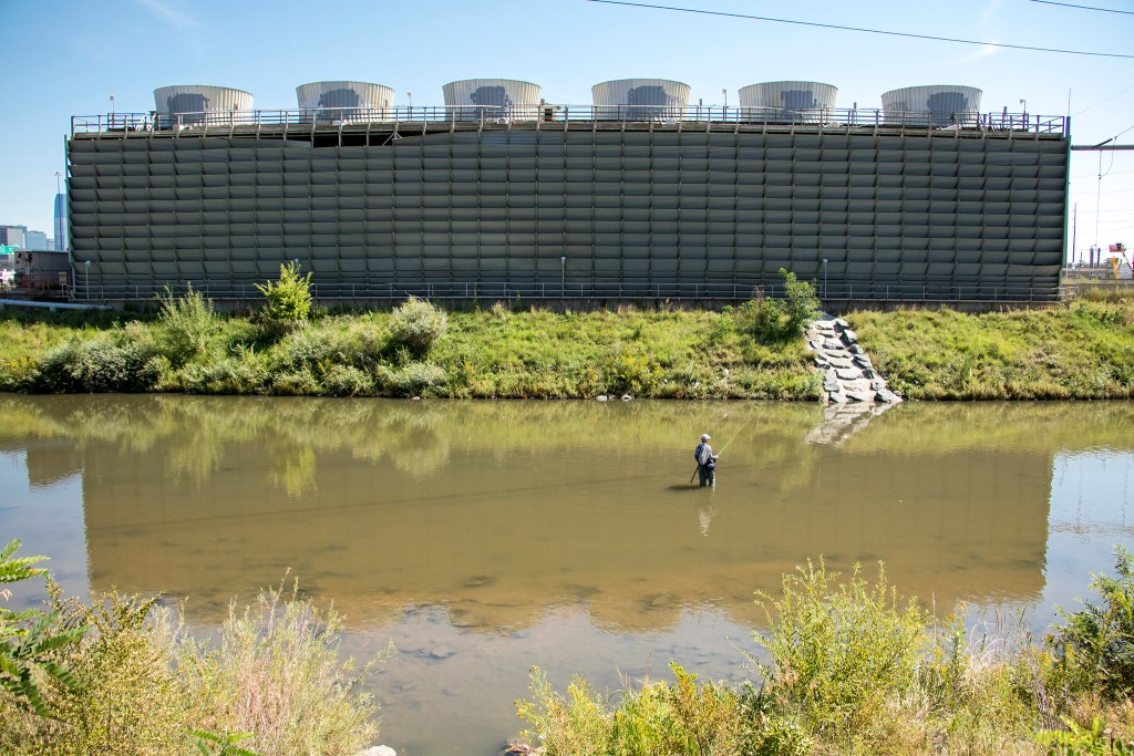 Gifford Maytham fishes for carp during Denver Trout Unlimited's 12th annual Carpslam flyfishing tournament on the South Platte River, Sept. 9, 2018. (Kevin J. Beaty/Denverite)