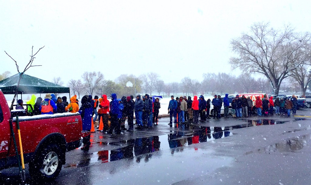 People wait in line on a very cold day to pick up trees through the 2016 Denver Digs Trees program. (Courtesy: Denver Forester Rob Davis)