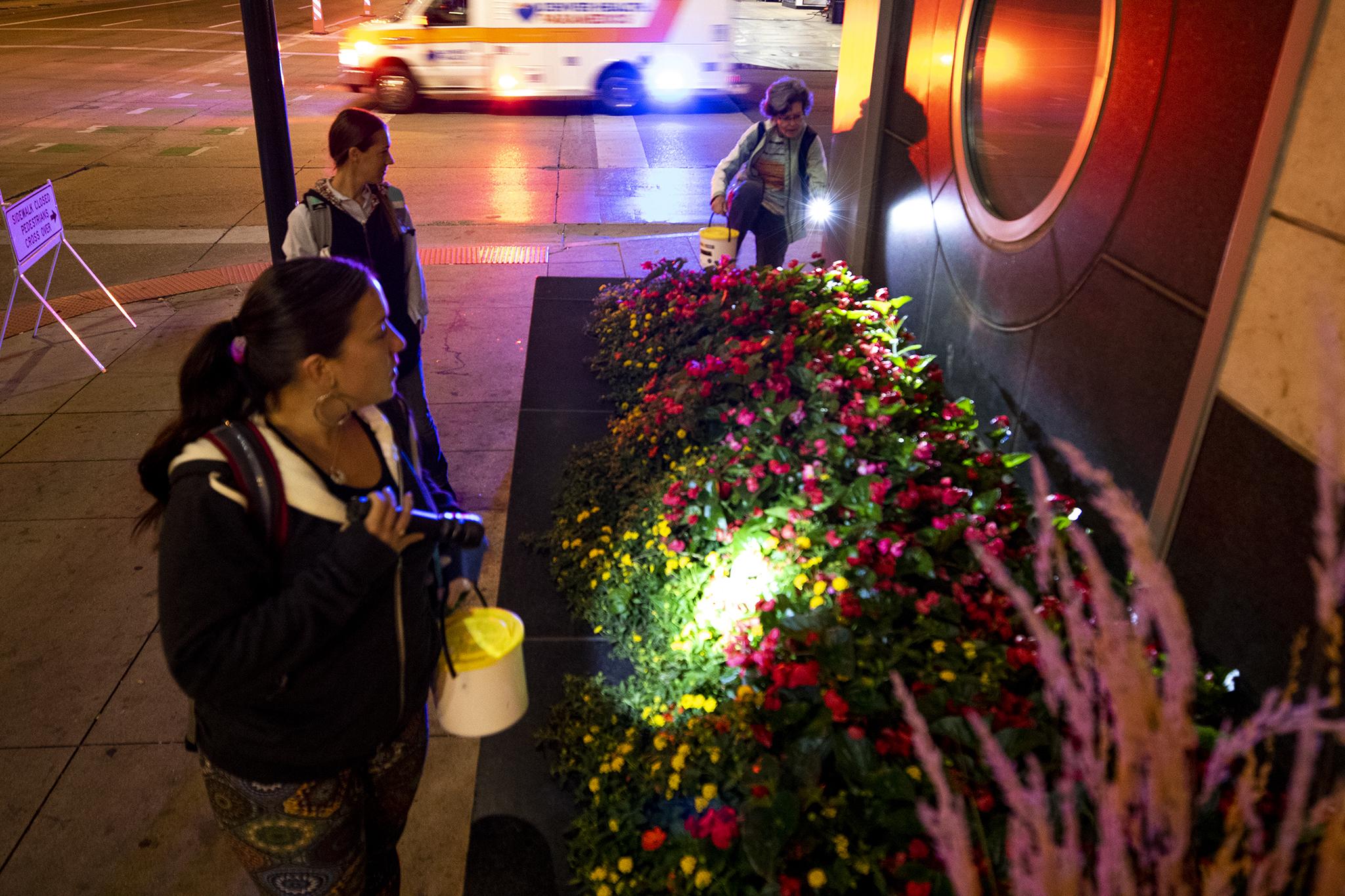 Do Denver's lit buildings kill birds? Nobody knows, so volunteers have