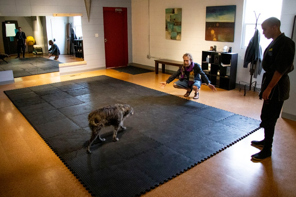 Logan Gray and Deacon Rodda greet Osho the dog inside The Co-Op at 1st's movement studio. Barnum West, Nov. 20, 2019. (Kevin J. Beaty/Denverite)