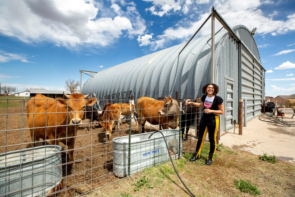 Mandy Groves greets the cows that stay on the property where she lives in Brighton. April 10, 2020. (Kevin J. Beaty/Denverite)