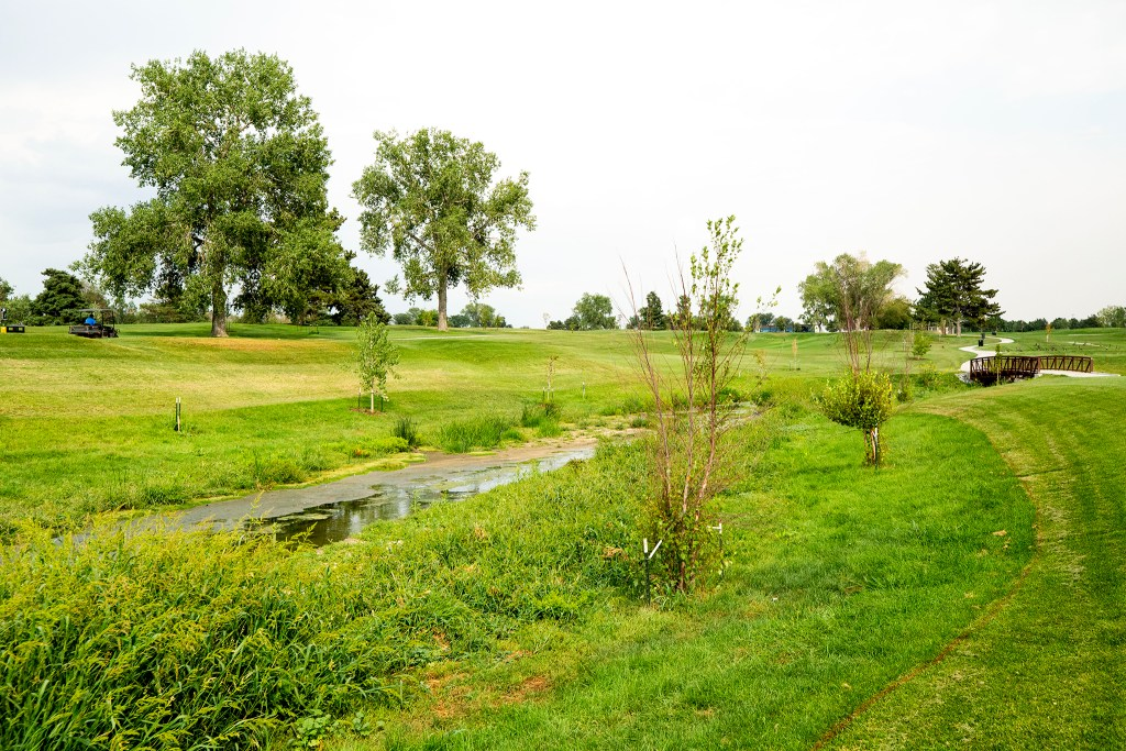 The flood channel inside City Park Golf Course is exposed, which will allow sunlight to treat it a bit and plants to soak up some of the water there. Aug. 20, 2020.