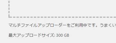 アップロードサイズ300GB