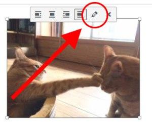 配置画像編集ボタン