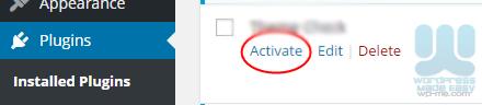 Install WordPress Plugin - Activate Plugin