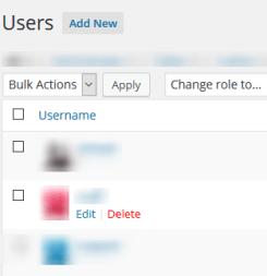 Delete old Admin account - Change WordPress Admin Username from Admin Area