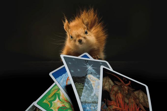 the happy squirrel card