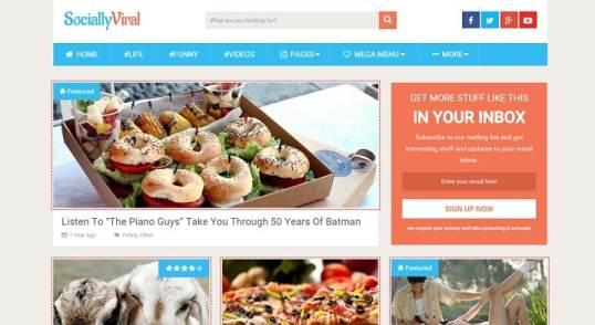 Fichiers de traduction en français du thème premium WordPress SociallyViral