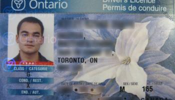 ¿Cómo tramitar la licencia de conducir en Canadá?