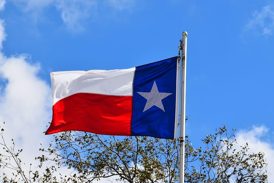 licencia de conducir de texas para indocumentados